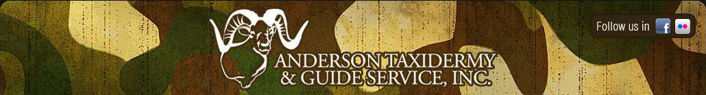 Anderson Taxidermy & Guide Service